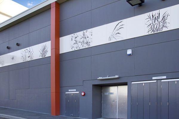 cutout-native-grasses-woolworths-panelling-schofields-nsw4734FEC3F-21FD-5A0A-DAEE-B66231221FC0.jpg